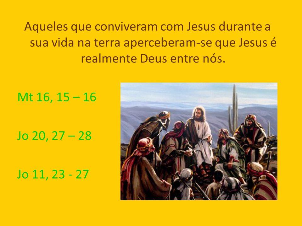 Aqueles que conviveram com Jesus durante a sua vida na terra aperceberam-se que Jesus é realmente Deus entre nós.