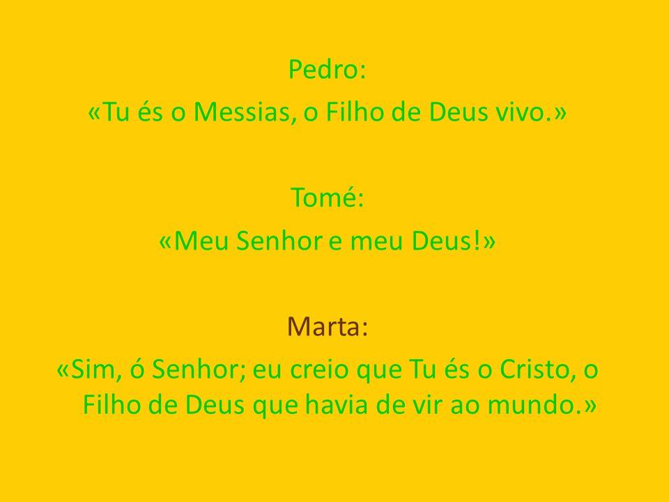 Pedro: «Tu és o Messias, o Filho de Deus vivo