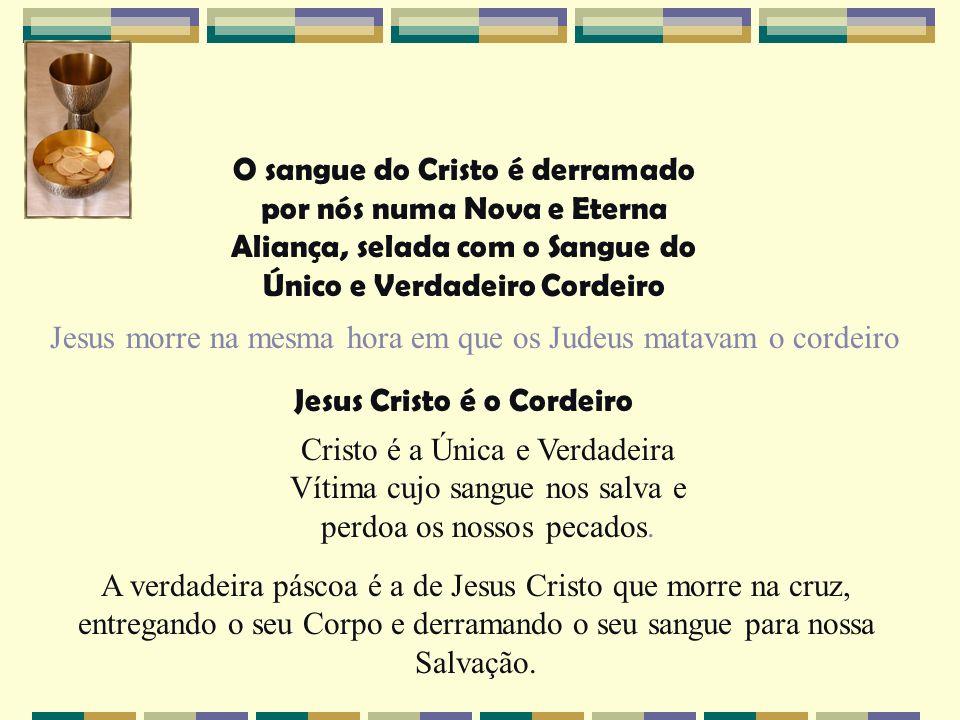 Jesus Cristo é o Cordeiro