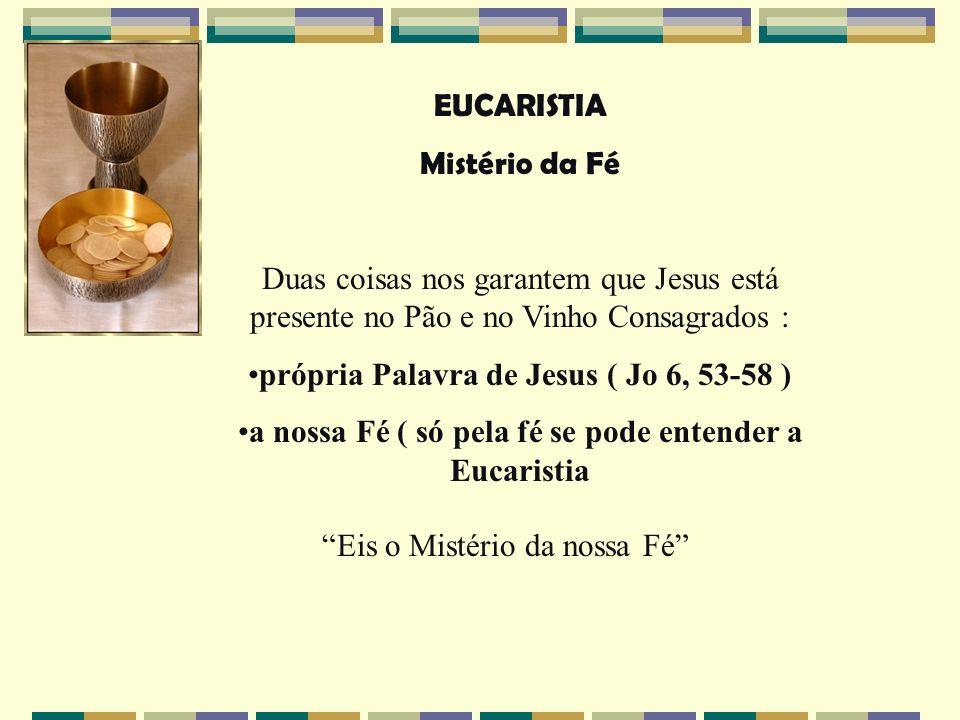 própria Palavra de Jesus ( Jo 6, 53-58 )