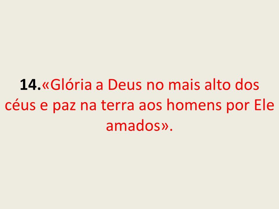 14.«Glória a Deus no mais alto dos céus e paz na terra aos homens por Ele amados».