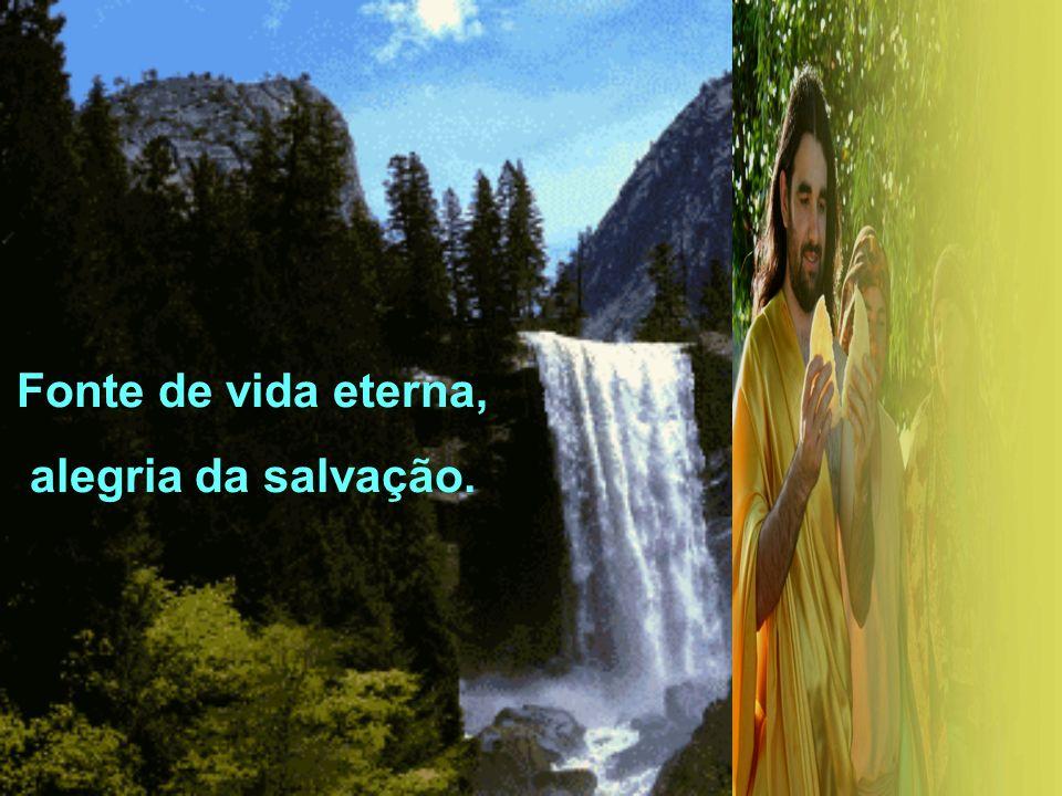 Fonte de vida eterna, alegria da salvação.