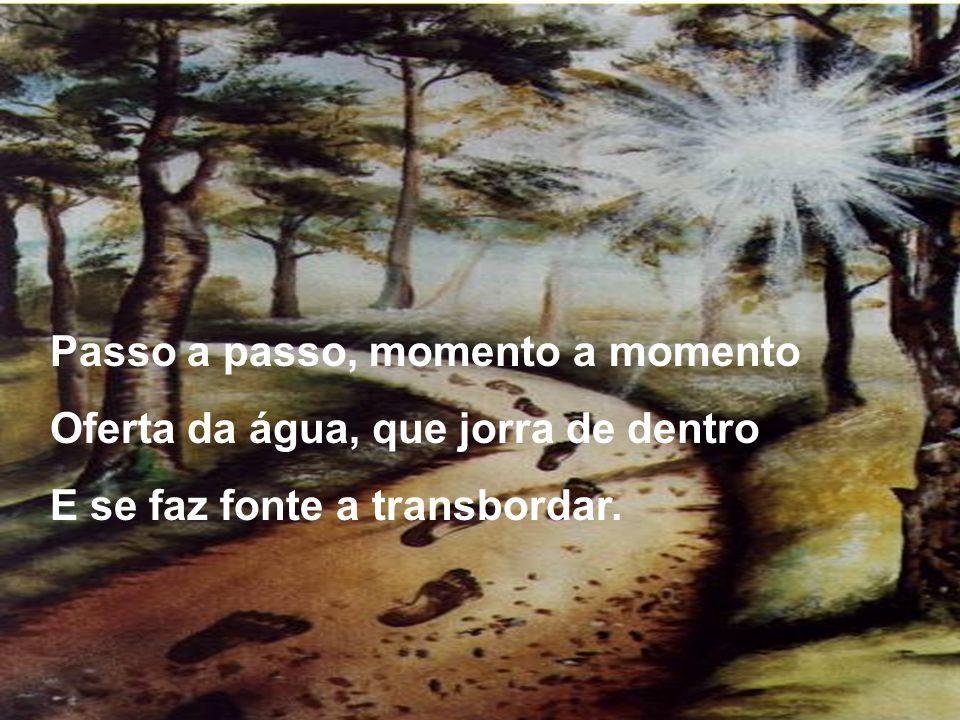Passo a passo, momento a momento