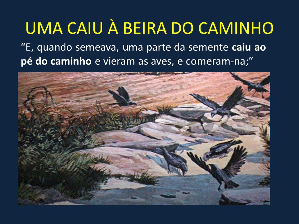 UMA CAIU À BEIRA DO CAMINHO