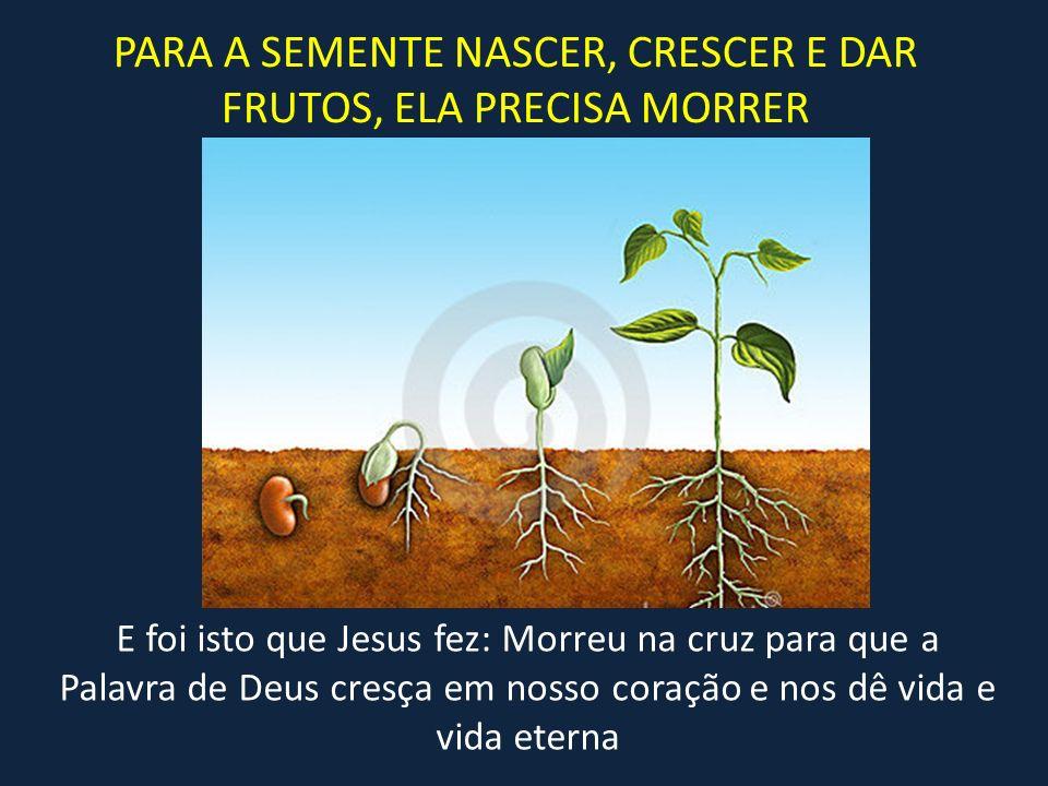 PARA A SEMENTE NASCER, CRESCER E DAR FRUTOS, ELA PRECISA MORRER