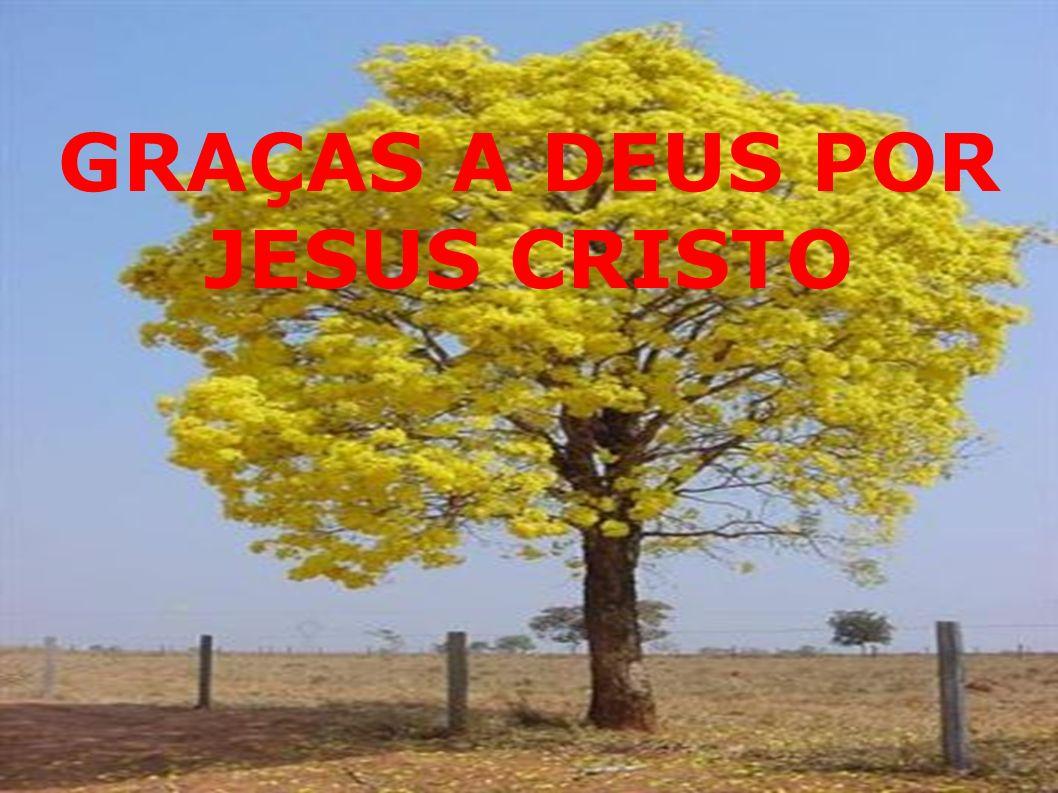 GRAÇAS A DEUS POR JESUS CRISTO