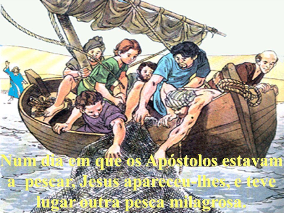 Num dia em que os Apóstolos estavam a pescar, Jesus apareceu-lhes, e teve lugar outra pesca milagrosa.
