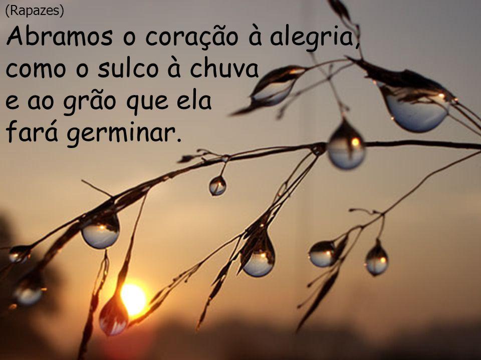 Abramos o coração à alegria, como o sulco à chuva e ao grão que ela