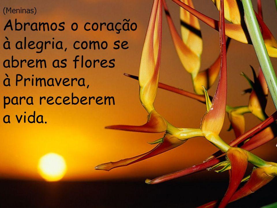 Abramos o coração à alegria, como se abrem as flores à Primavera,