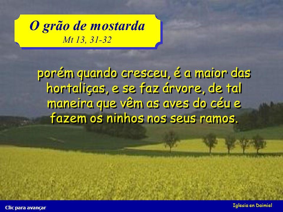 O grão de mostarda Mt 13, 31-32.