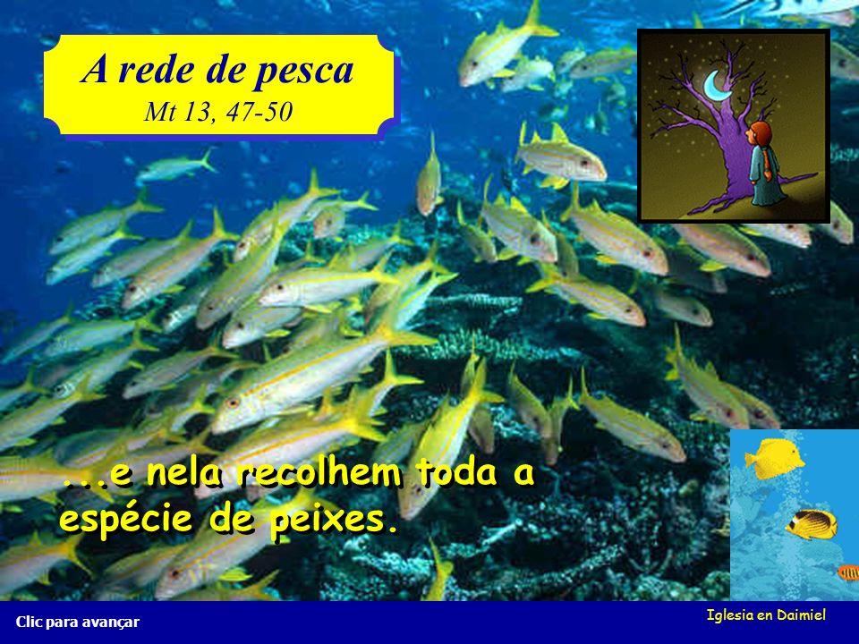 A rede de pesca ...e nela recolhem toda a espécie de peixes.