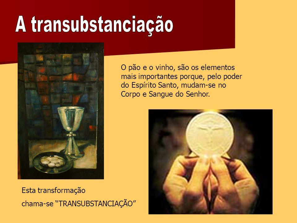 A transubstanciação O pão e o vinho, são os elementos mais importantes porque, pelo poder do Espírito Santo, mudam-se no Corpo e Sangue do Senhor.