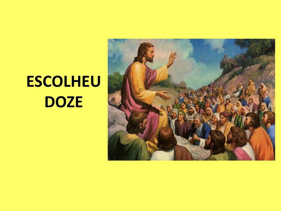 ESCOLHEU DOZE