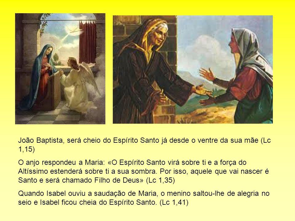 João Baptista, será cheio do Espírito Santo já desde o ventre da sua mãe (Lc 1,15)