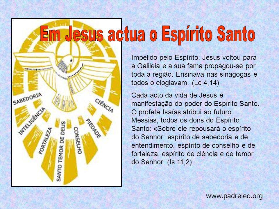 Em Jesus actua o Espírito Santo