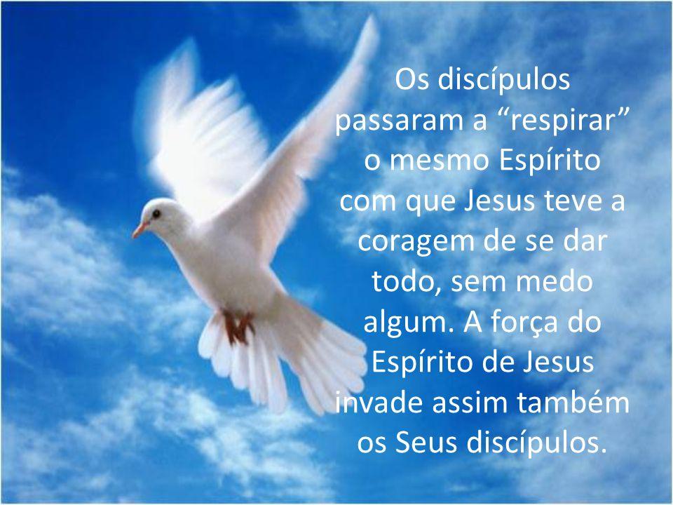 Os discípulos passaram a respirar o mesmo Espírito com que Jesus teve a coragem de se dar todo, sem medo algum.