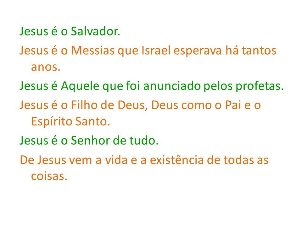 Jesus é o Salvador. Jesus é o Messias que Israel esperava há tantos anos.
