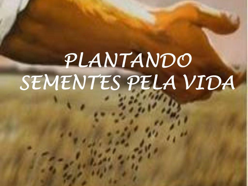 PLANTANDO SEMENTES PELA VIDA