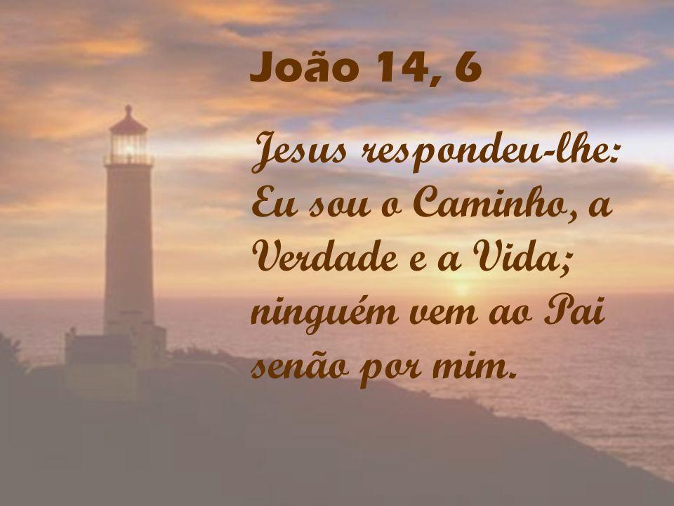 João 14, 6Jesus respondeu-lhe: Eu sou o Caminho, a Verdade e a Vida; ninguém vem ao Pai senão por mim.
