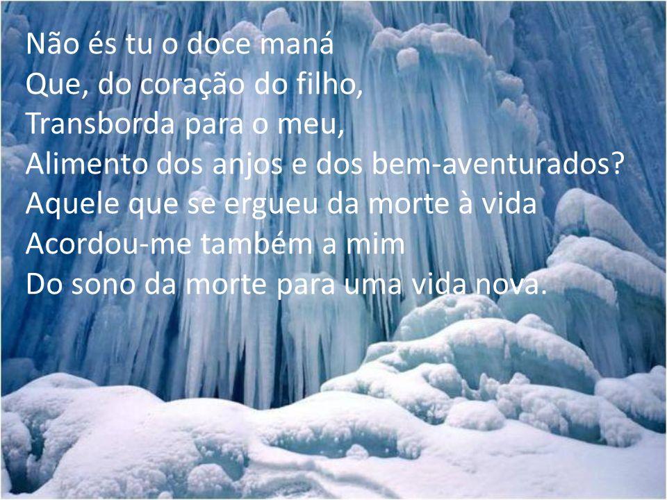 Não és tu o doce maná Que, do coração do filho, Transborda para o meu, Alimento dos anjos e dos bem-aventurados