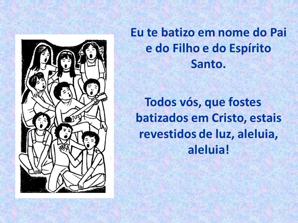 Eu te batizo em nome do Pai e do Filho e do Espírito Santo