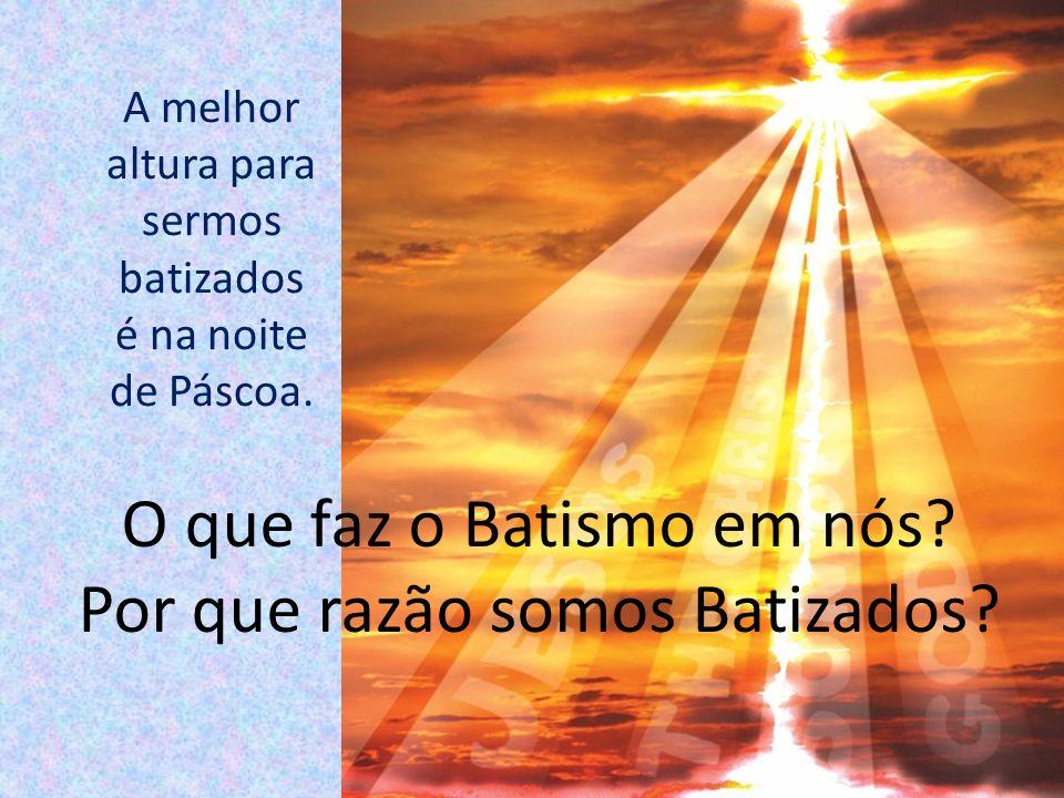 O que faz o Batismo em nós Por que razão somos Batizados