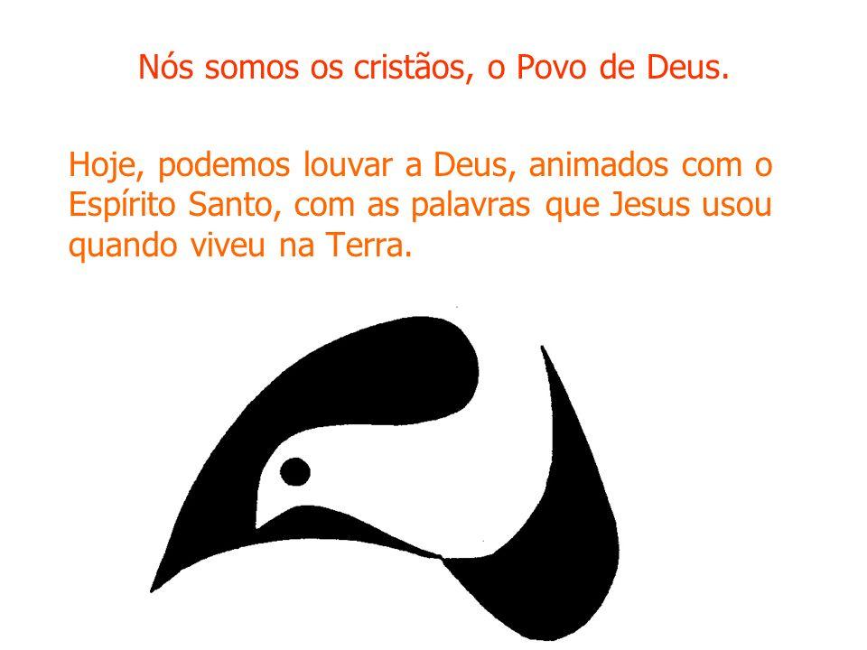 Nós somos os cristãos, o Povo de Deus.