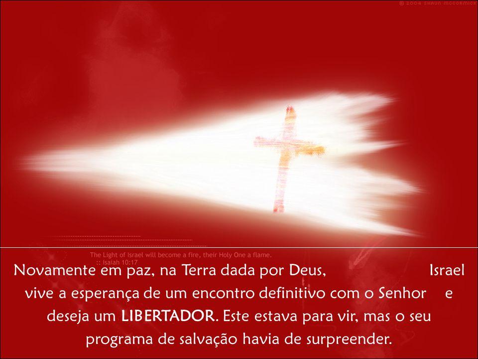 Novamente em paz, na Terra dada por Deus, Israel vive a esperança de um encontro definitivo com o Senhor e deseja um LIBERTADOR.