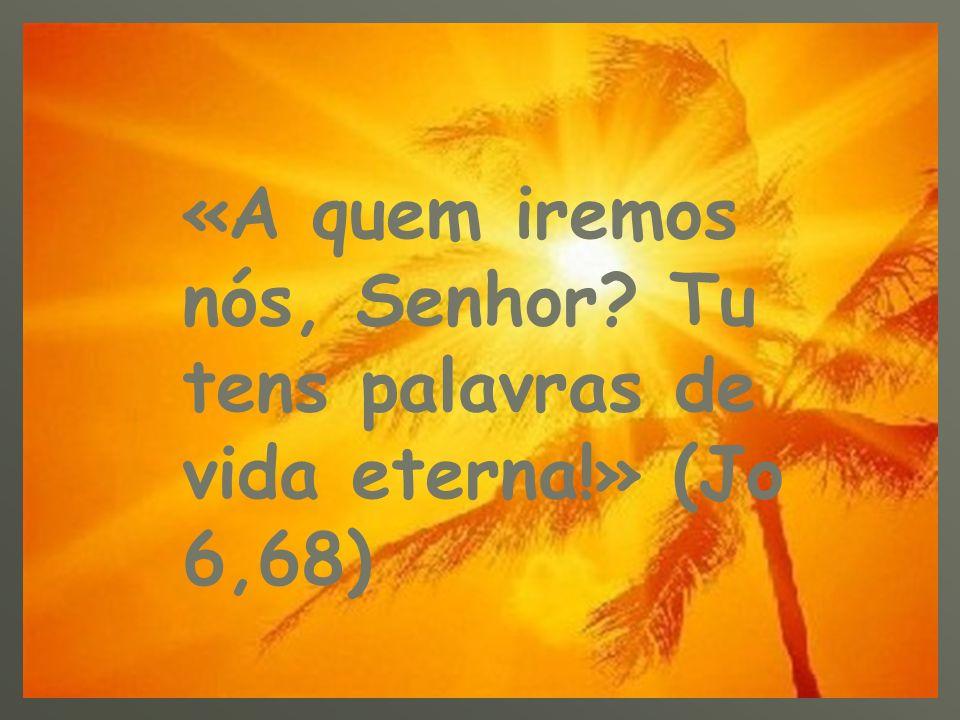 «A quem iremos nós, Senhor. Tu tens palavras de vida eterna