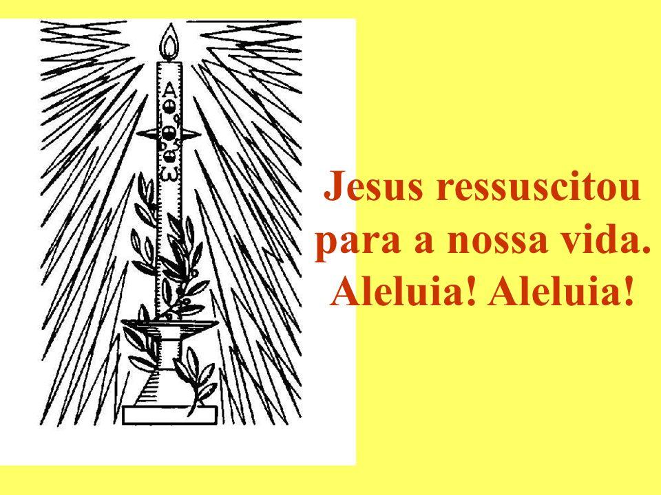 Jesus ressuscitou para a nossa vida.