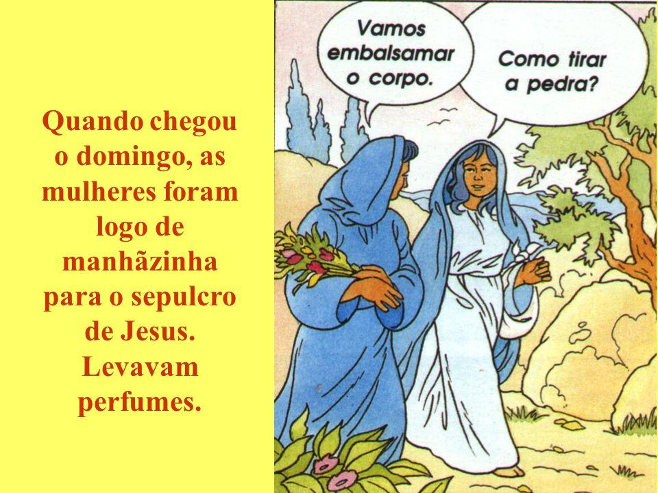 Quando chegou o domingo, as mulheres foram logo de manhãzinha para o sepulcro de Jesus.