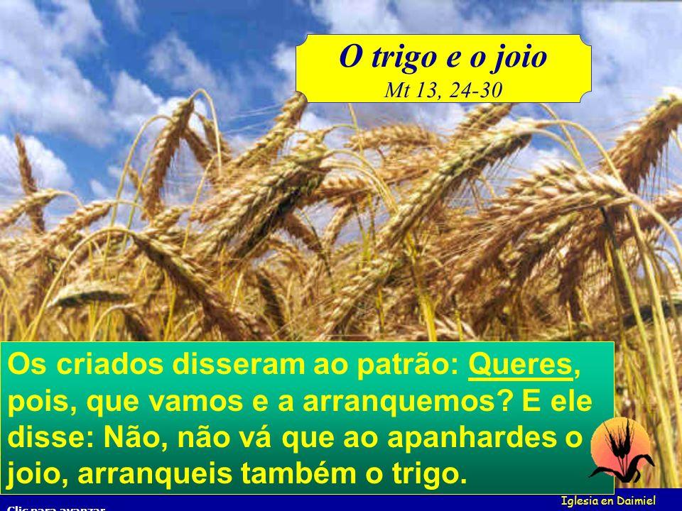 O trigo e o joioMt 13, 24-30.