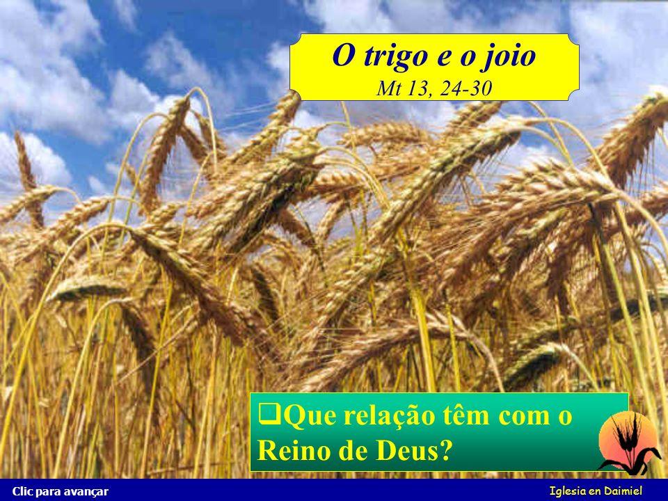 O trigo e o joio Que relação têm com o Reino de Deus