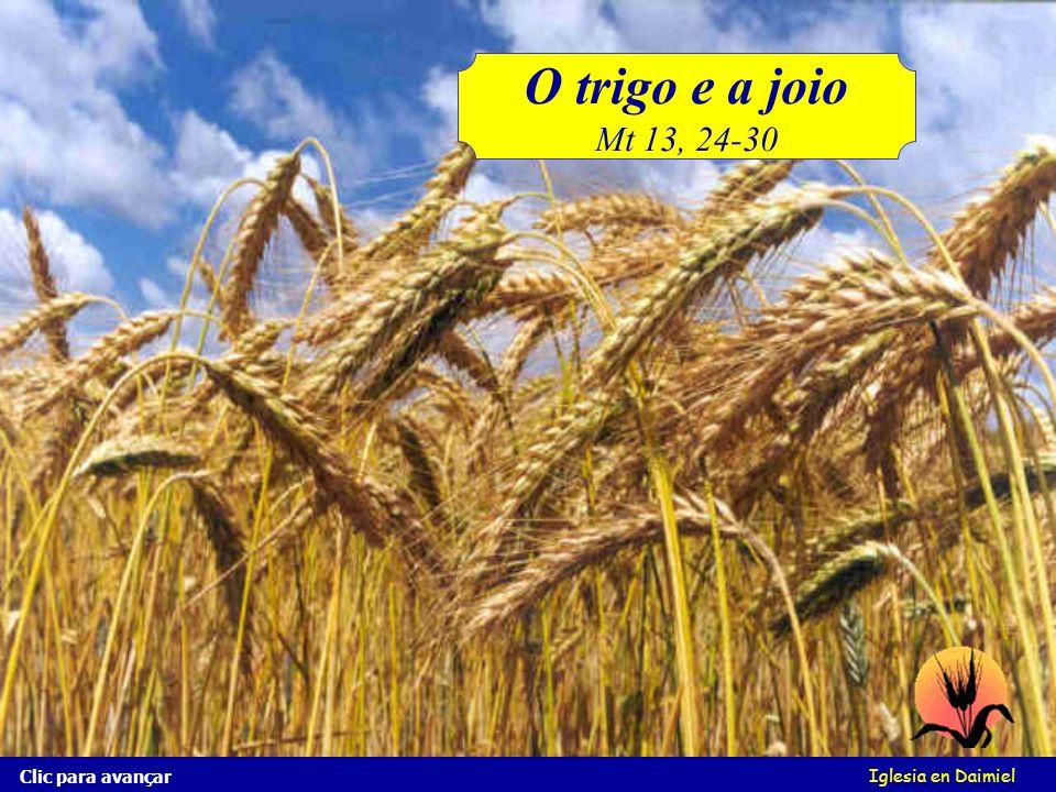 O trigo e a joio Mt 13, 24-30 Clic para avançar Iglesia en Daimiel