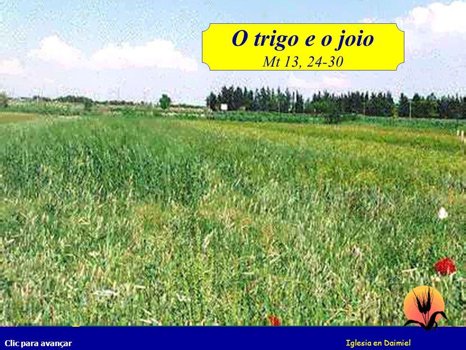 O trigo e o joio Mt 13, 24-30.