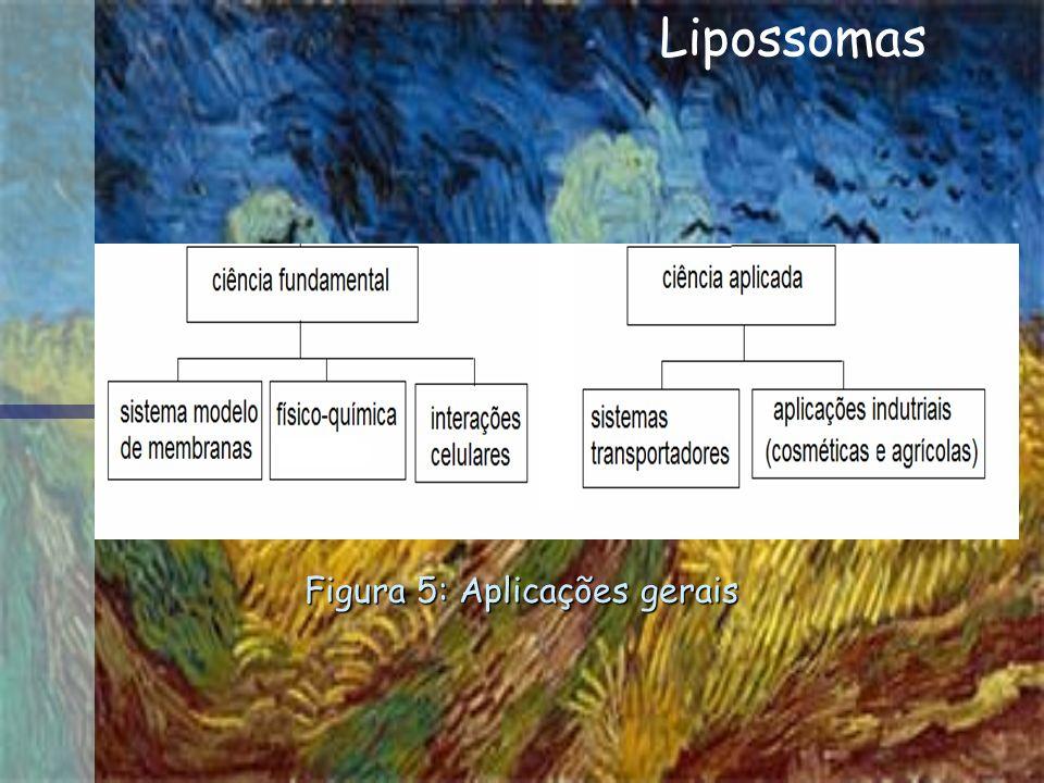 Figura 5: Aplicações gerais
