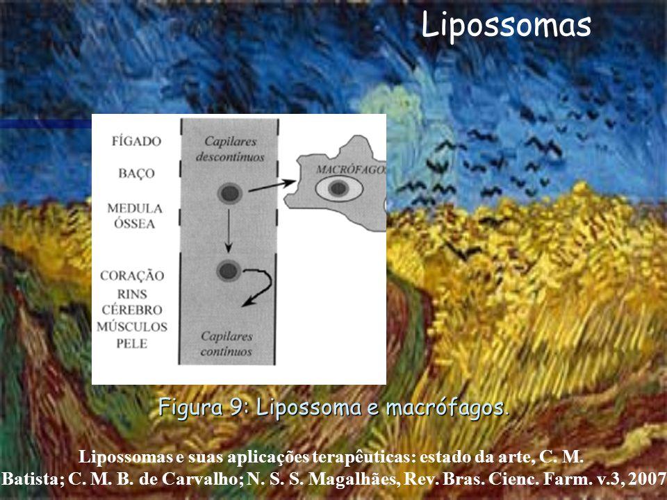 Lipossomas e suas aplicações terapêuticas: estado da arte, C. M.