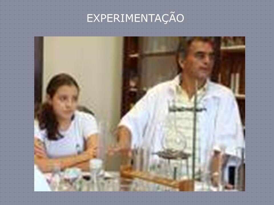 EXPERIMENTAÇÃO 36