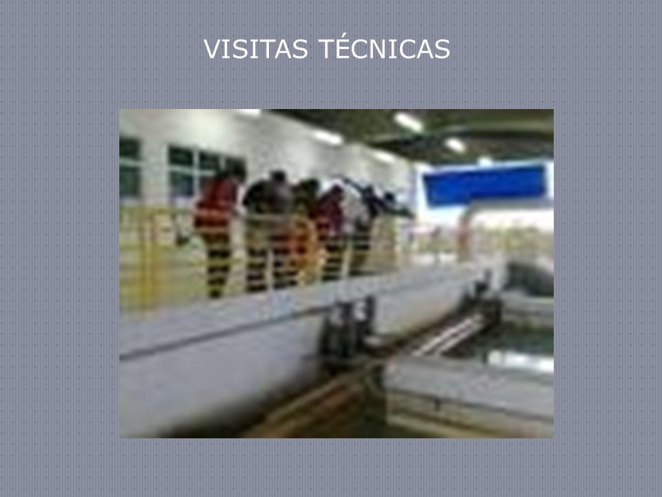 VISITAS TÉCNICAS 37