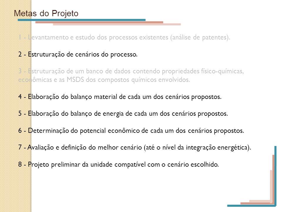 Metas do Projeto1 - Levantamento e estudo dos processos existentes (análise de patentes). 2 - Estruturação de cenários do processo.