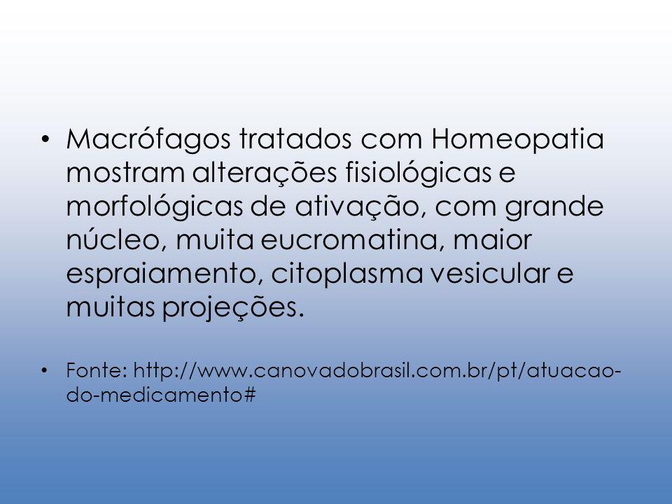 Macrófagos tratados com Homeopatia mostram alterações fisiológicas e morfológicas de ativação, com grande núcleo, muita eucromatina, maior espraiamento, citoplasma vesicular e muitas projeções.