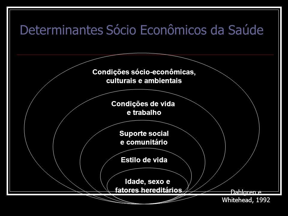 Determinantes Sócio Econômicos da Saúde