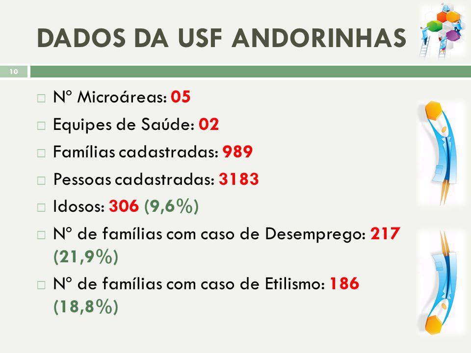 DADOS DA USF ANDORINHAS