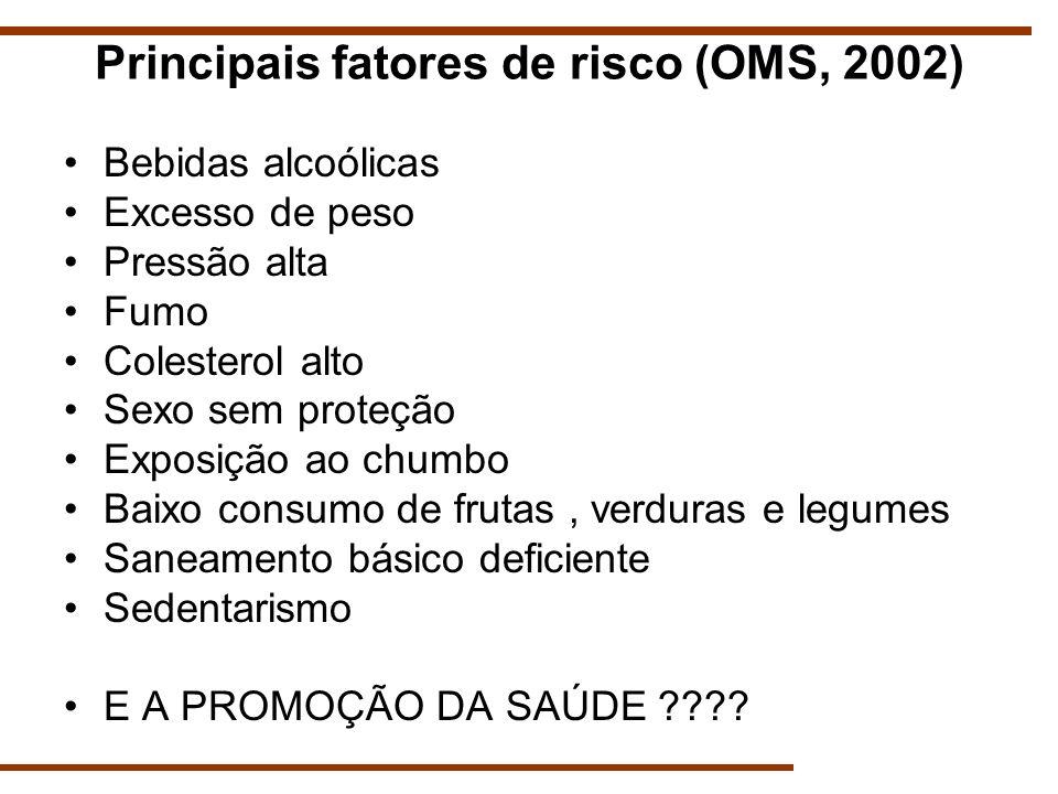 Principais fatores de risco (OMS, 2002)