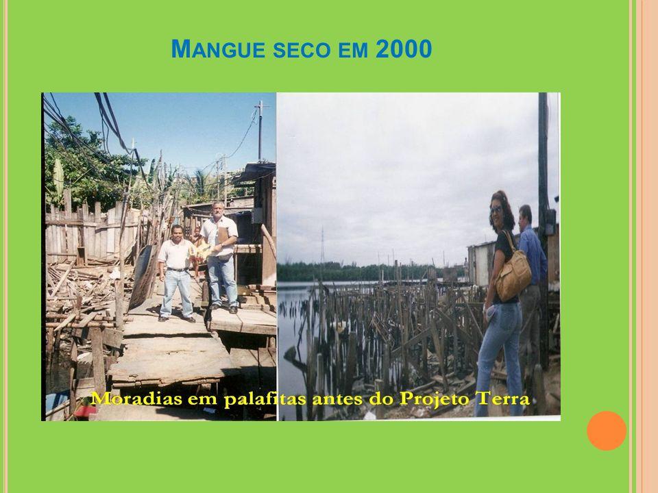 Mangue seco em 2000