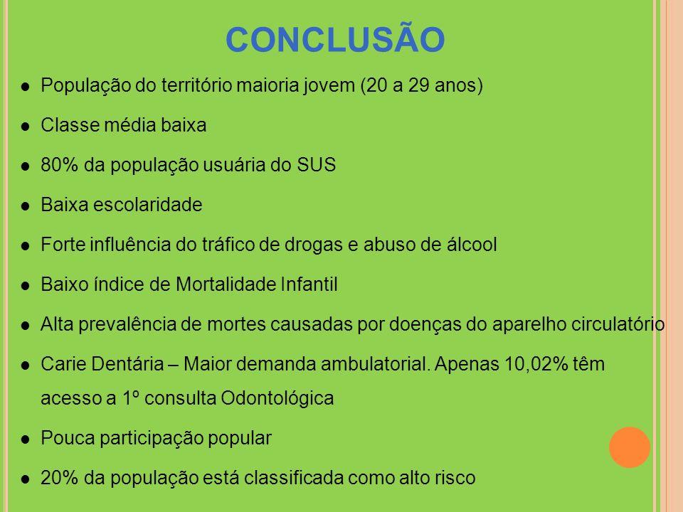 CONCLUSÃO População do território maioria jovem (20 a 29 anos)