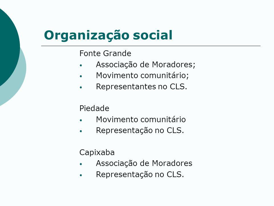 Organização social Fonte Grande Associação de Moradores;