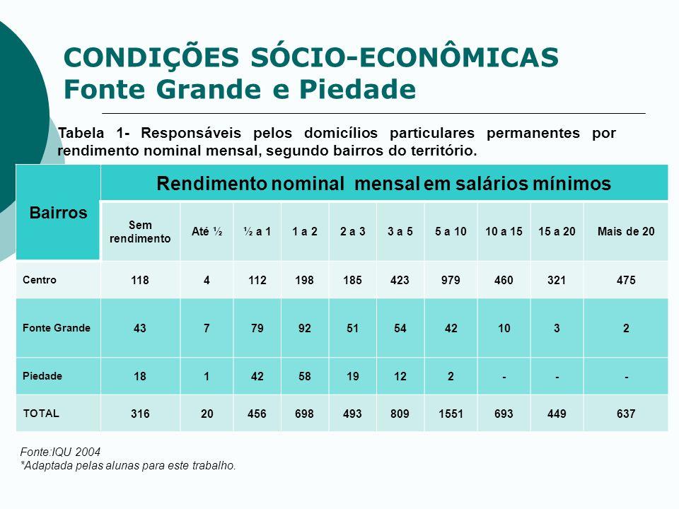 CONDIÇÕES SÓCIO-ECONÔMICAS Fonte Grande e Piedade