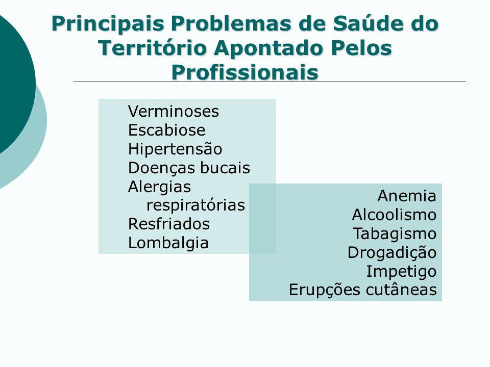 Principais Problemas de Saúde do Território Apontado Pelos Profissionais