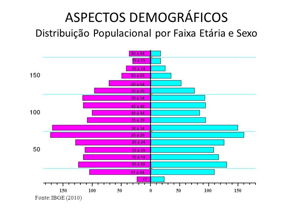 ASPECTOS DEMOGRÁFICOS Distribuição Populacional por Faixa Etária e Sexo